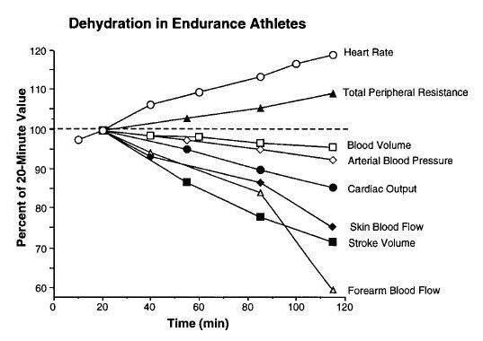 運動時的心血管循環轉變