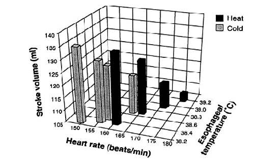 運動時的心血管循環轉變(Cardiovascular Drift)