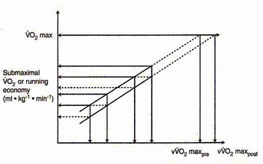 運動生理週訊第319期 vVO<sub>2</sub>max的應用