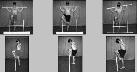 FMS-hurdle step