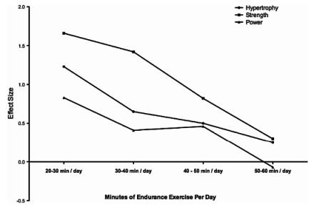 運動生理週訊第325期 同步訓練 (concurrent training)對肌力的影響