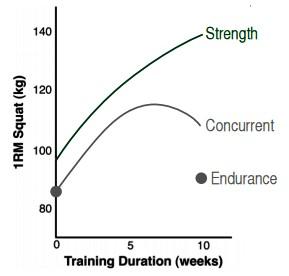 運動生理週訊第325期 同步訓練 (concurrent training) 對肌力的影響