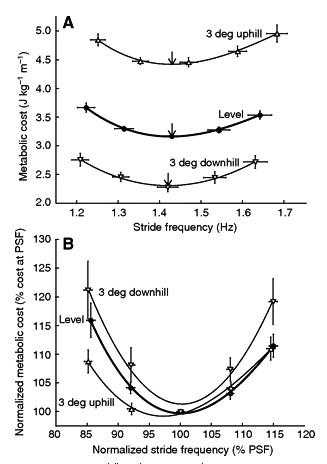 運動生理週訊第330期 跑步的最佳步頻