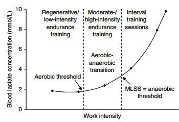 運動生理週訊第346期 運動訓練的心跳率區間