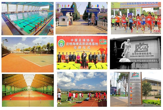 運動生理週訊第339期 台灣高地訓練服務平台