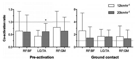 運動生理週訊第369期 跑步時膝關節的共同收縮